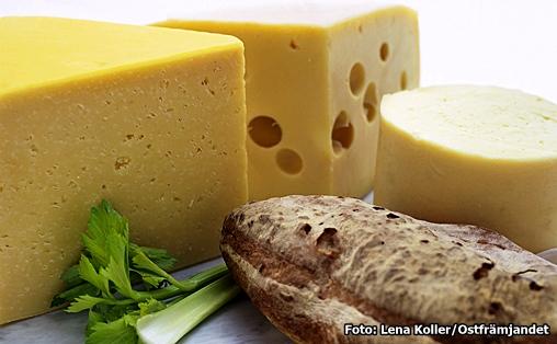 innehåller ost laktos